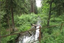 Падртьский ручей