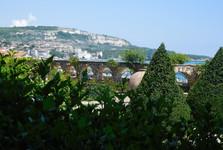 botanical garden - vistas