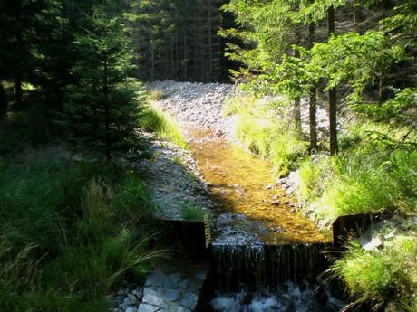 Pilský creek