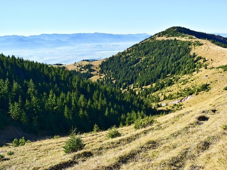 pohľad z turistického chodníka na vrch Babky