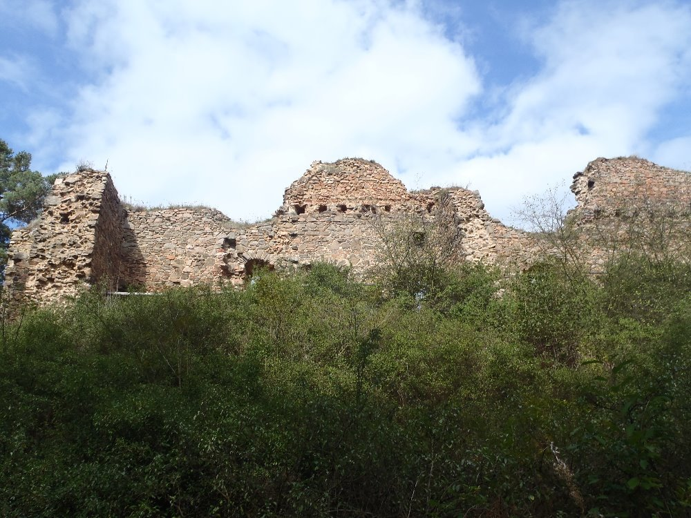общий вид на дворец замка