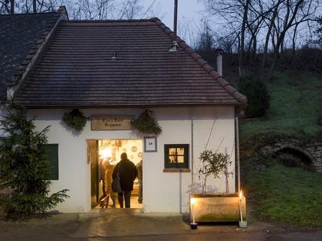 Weinviertel – (c) Weinviertel Tourismus / Astrid Bartl