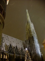 Вена, Stephansplatz