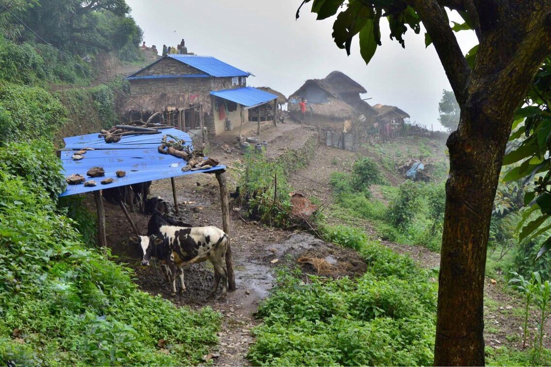 традиционные горные жилища