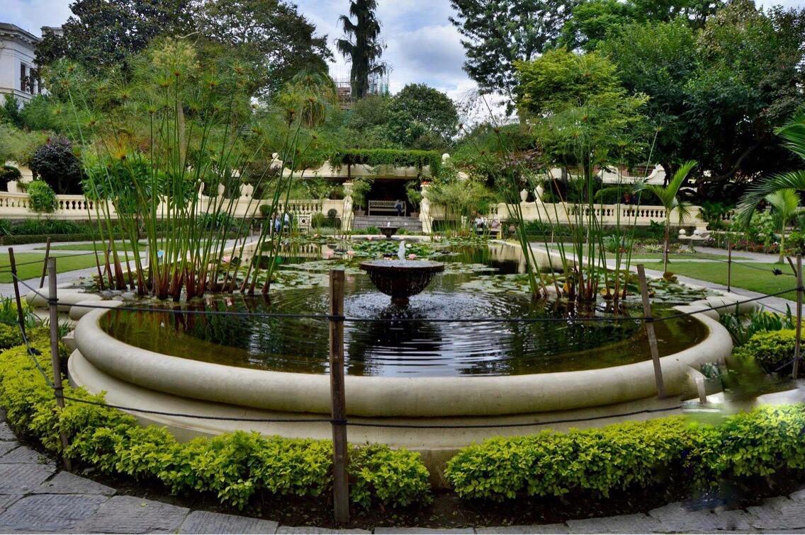 Gardens of dream