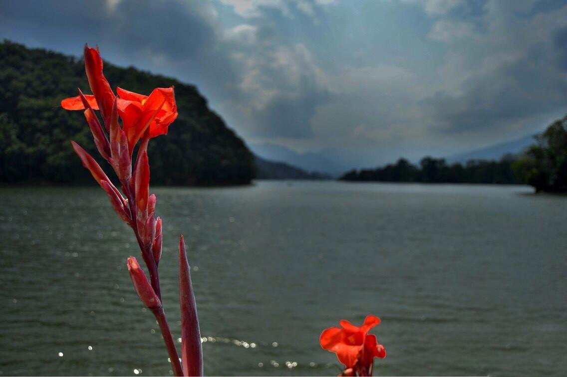 jezero Fewa