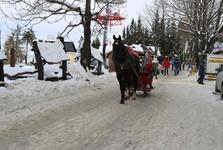зимой на горе Губаловка развлечения гарантированы