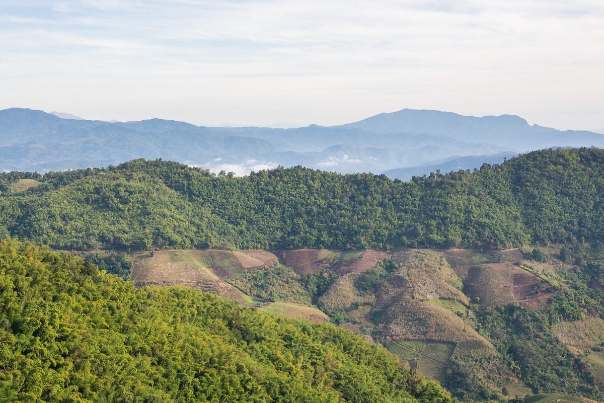 celou oblast Mae Salong obklopují krásné hory