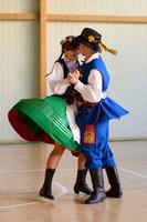 Polský folklor je mnohem živější než ten český. Děti i mládež se s radostí zapojují do folklorních akcí. Každý region má jinou barvu a styl krojů.