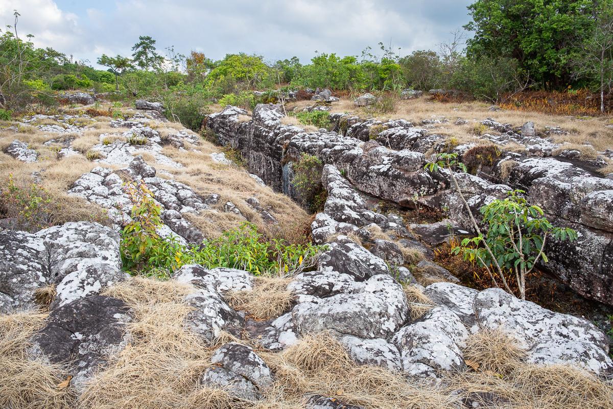 nikdo přesně neví, jak kamenná pláň vznikla, důvodem je zřejmě tektonický zlom a eroze