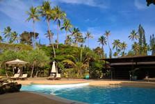 resort Oure Terra nabízí relaxování u bazénu s exotickým drinkem