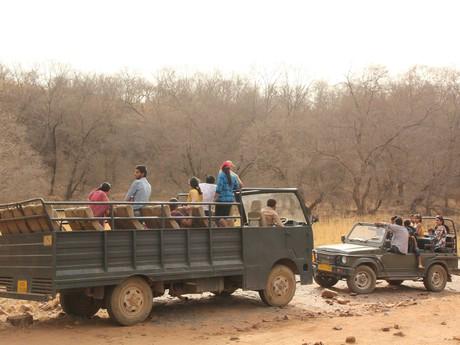 na safari