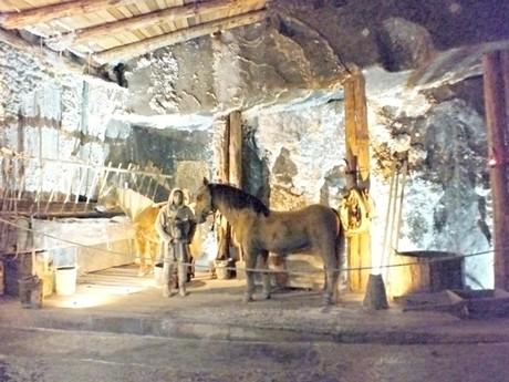конюшня в камере Казимира Великого (Величка)