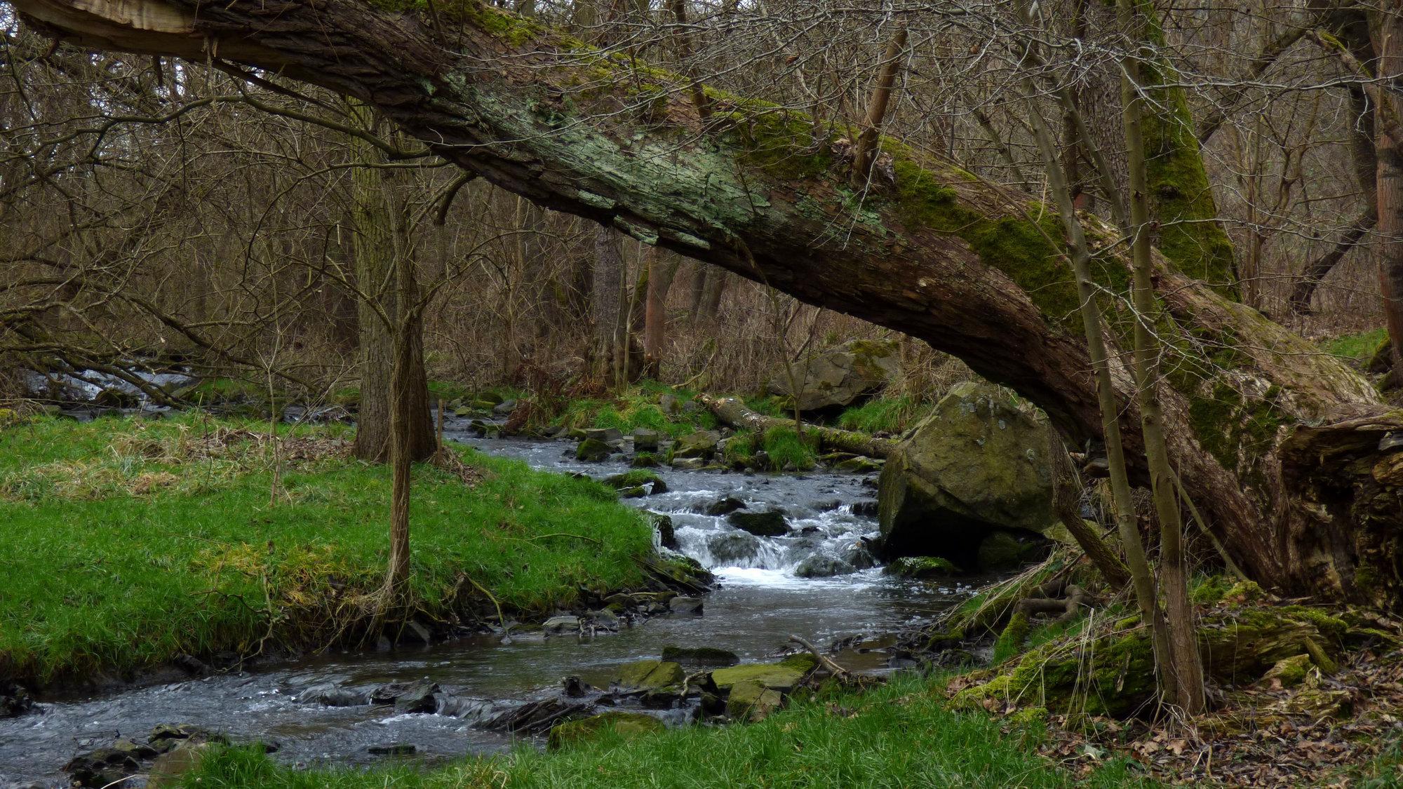 romantická príroda v Tichom údolí