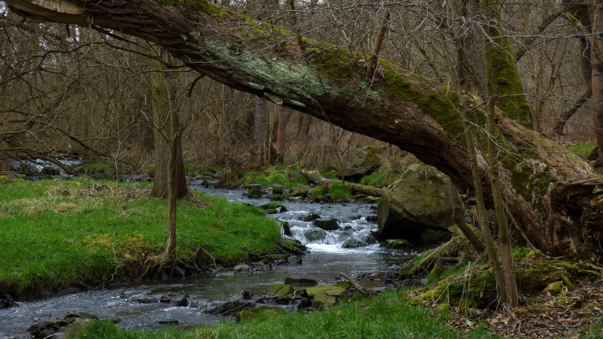 romantická příroda v Tichém údolí