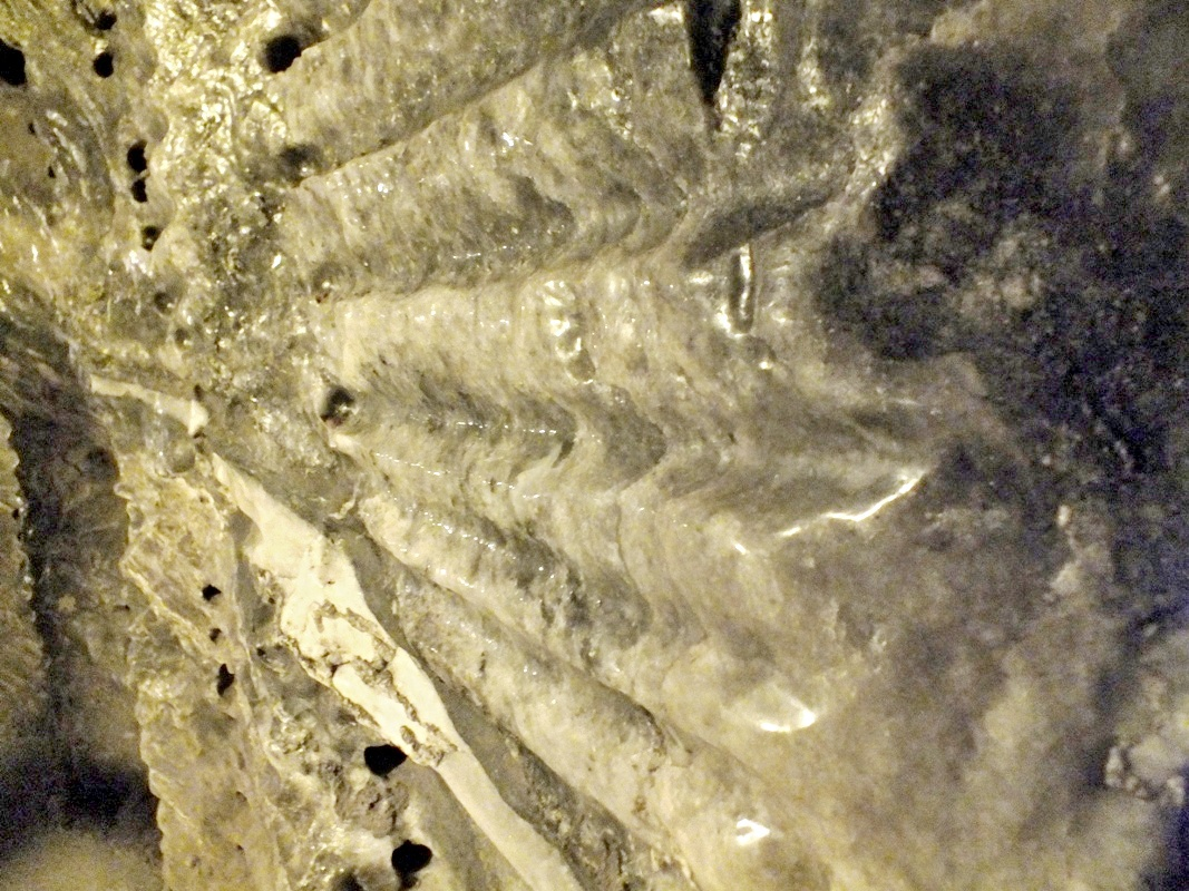 solná stěna (Wieliczka)