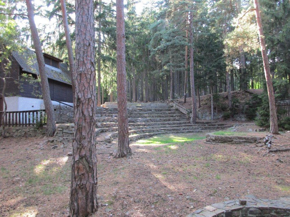 зрительный зал лесного театра