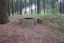 партизанский бункер