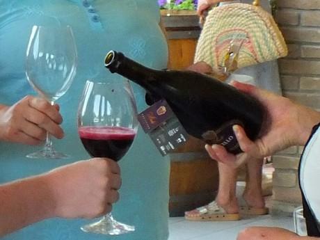 ochutnávka vína (Casale del Groppone)