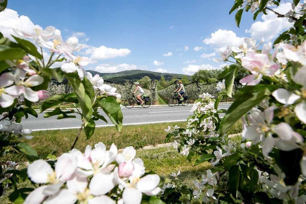 (c) Steiermark Tourismus  - ikarus.cc