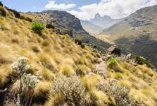nádherný pohled do údolí, které se táhne až pod vrchol Mt. Kenya