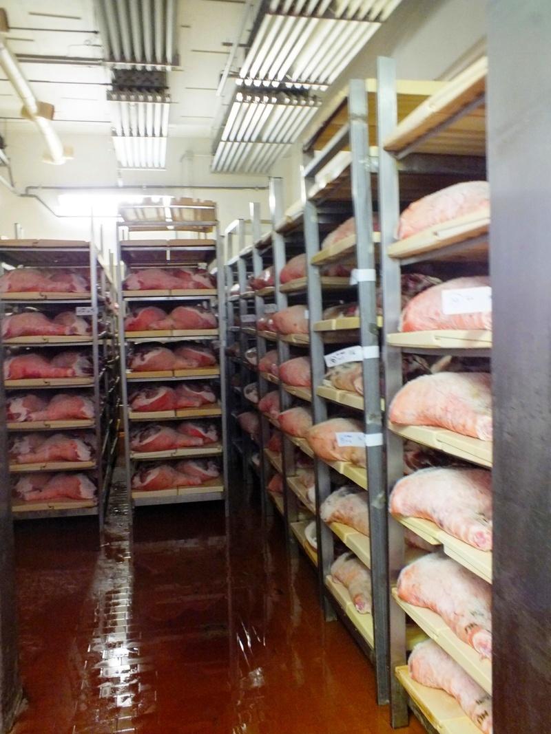 šunka v chladničce, Salumifico Massimo (Langhirano)