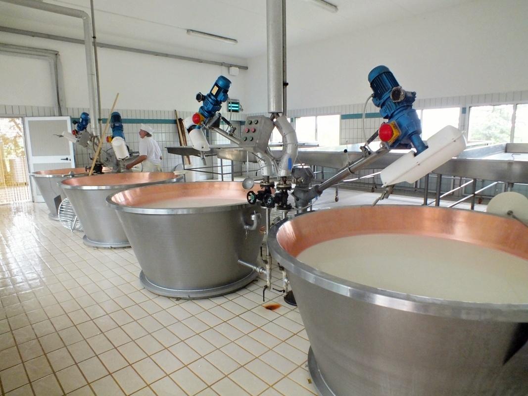 míchání mléka, výroba parmezánu
