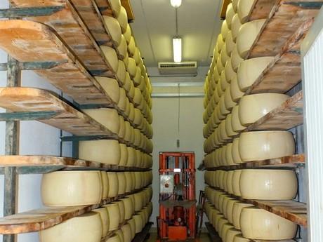 zrenie, výroba parmezánu (Lesignano de Bagni)