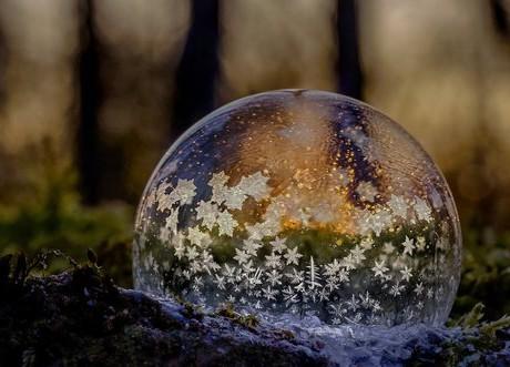 1. cena redakce, Květa Novotná, Ledová bublina