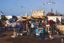 rušný rybí trh