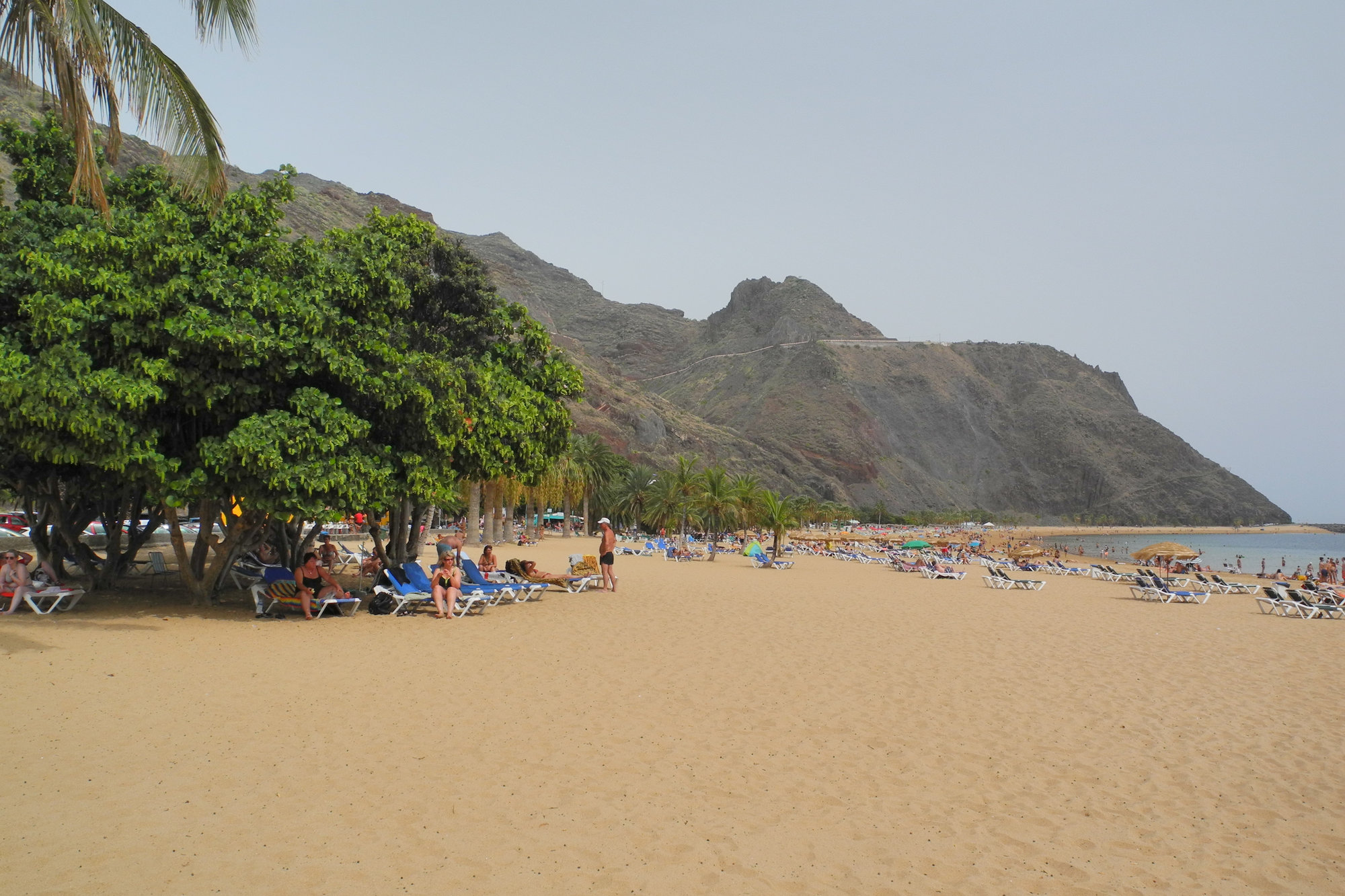 Playa de Las Teresitas  artificial beach with sand from Sahara