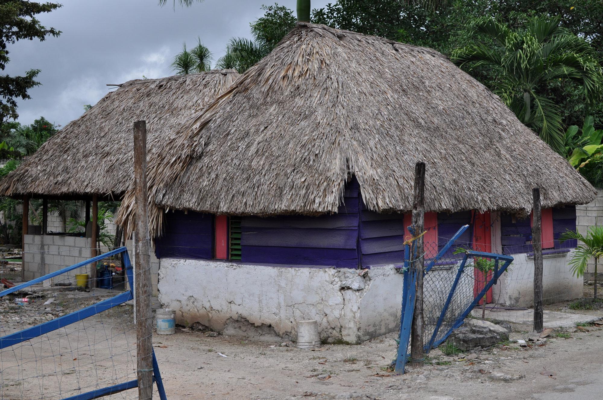 místní domy