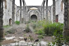 ruiny kostela Iglesia San Agustín