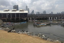 odpoledne v přístavu
