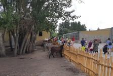 Malkia Park