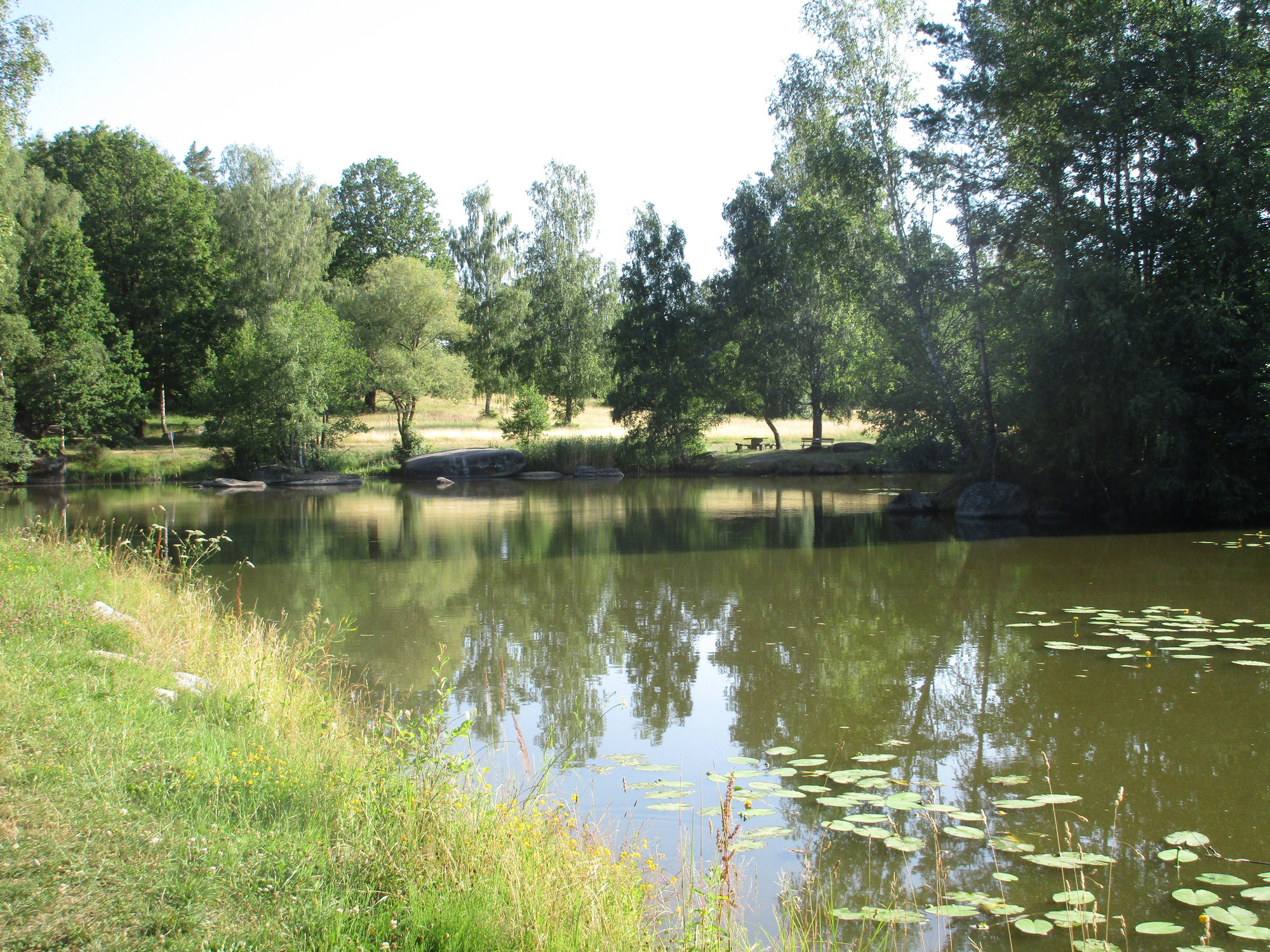 rybník Blockheide Teich