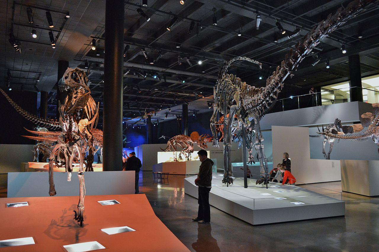 Muzeum přírodních věd