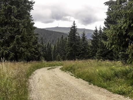 Bystrá dolina - v pozadí Kráľová hoľa