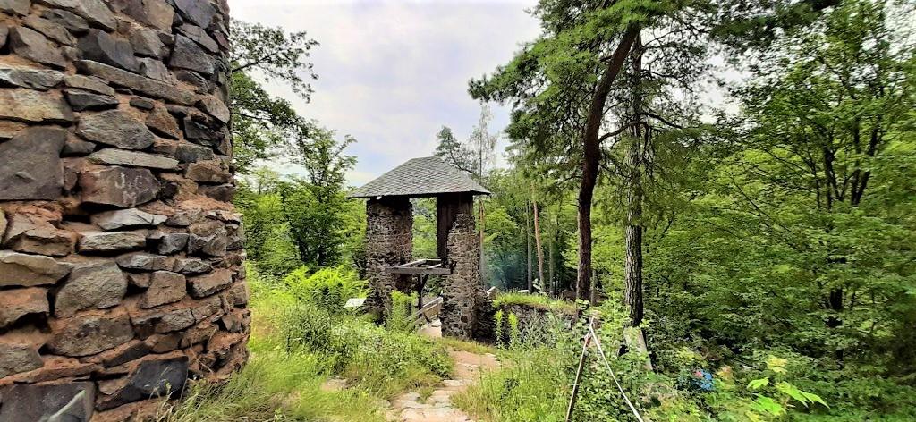 hrad Zlenice