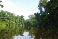 Tortuguero National Park - boat cruise