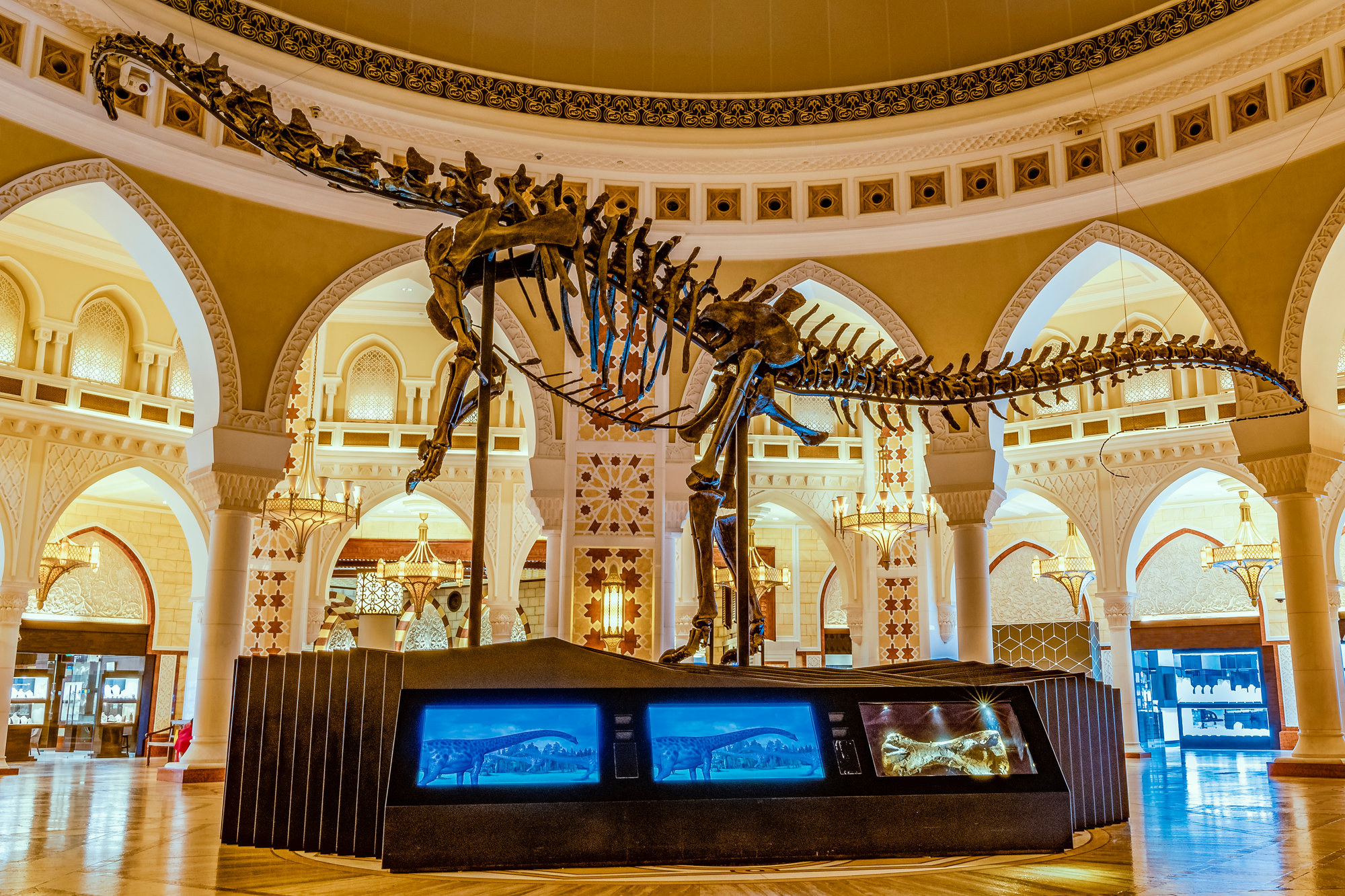 dinosaur skeleton inside Dubai Mall