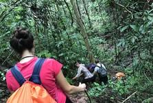 поход в джунглях
