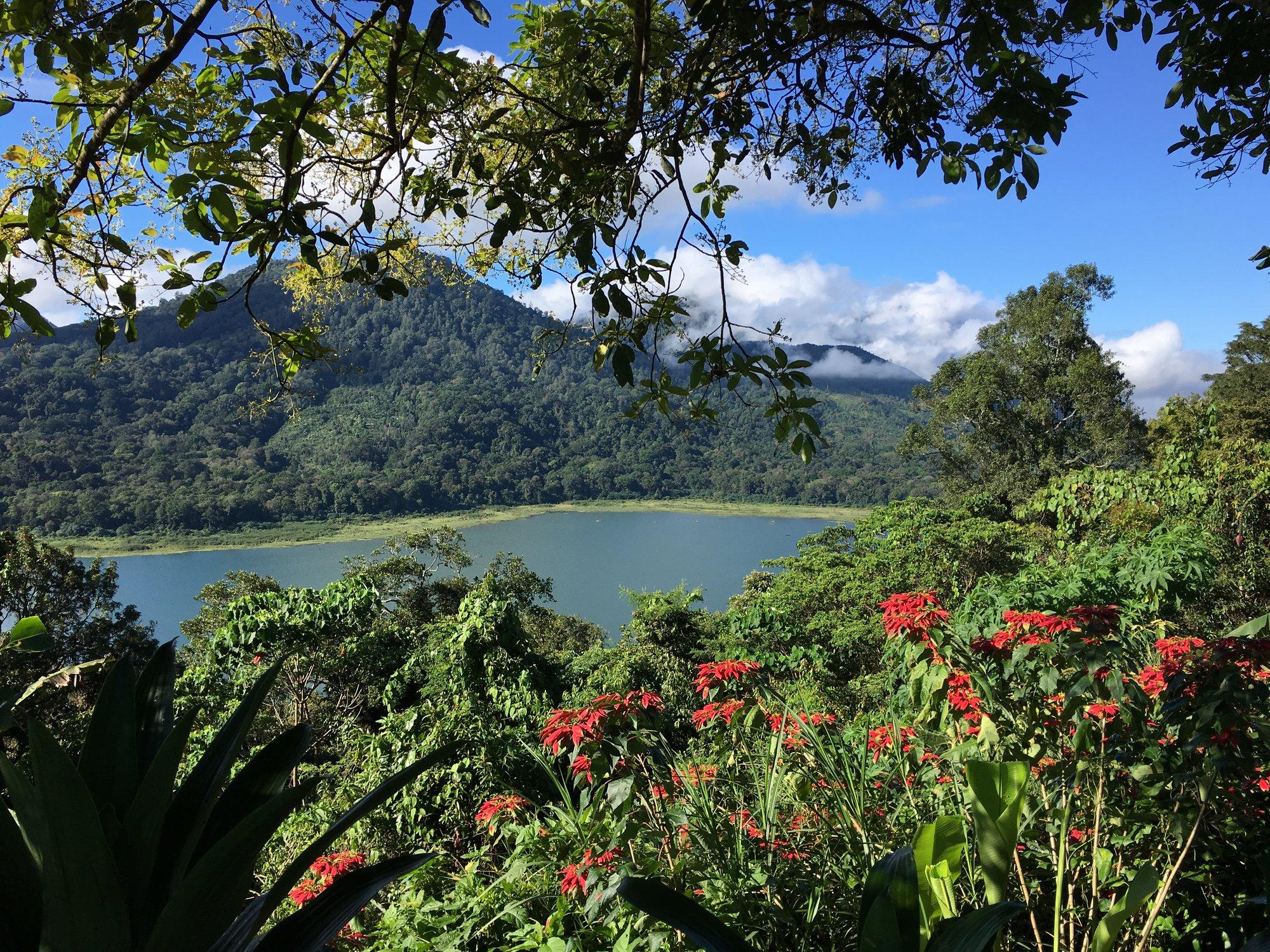 Bali je velmi zeleným ostrovem