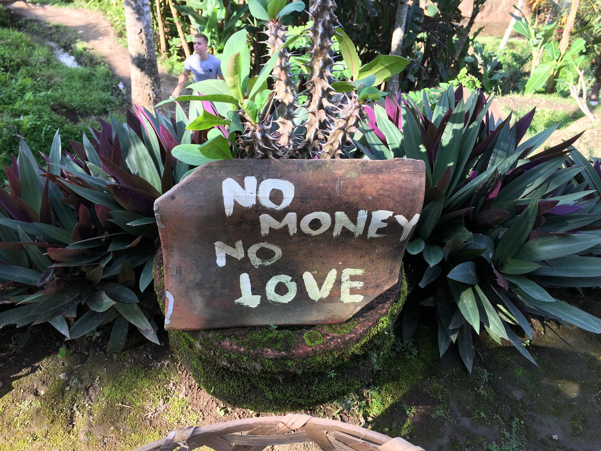 Žádné peníze – žádná láska