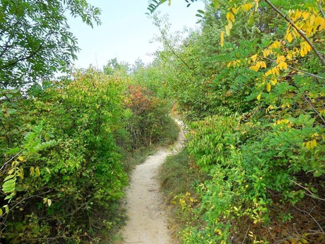 Tipy na výlety: okolitá príroda