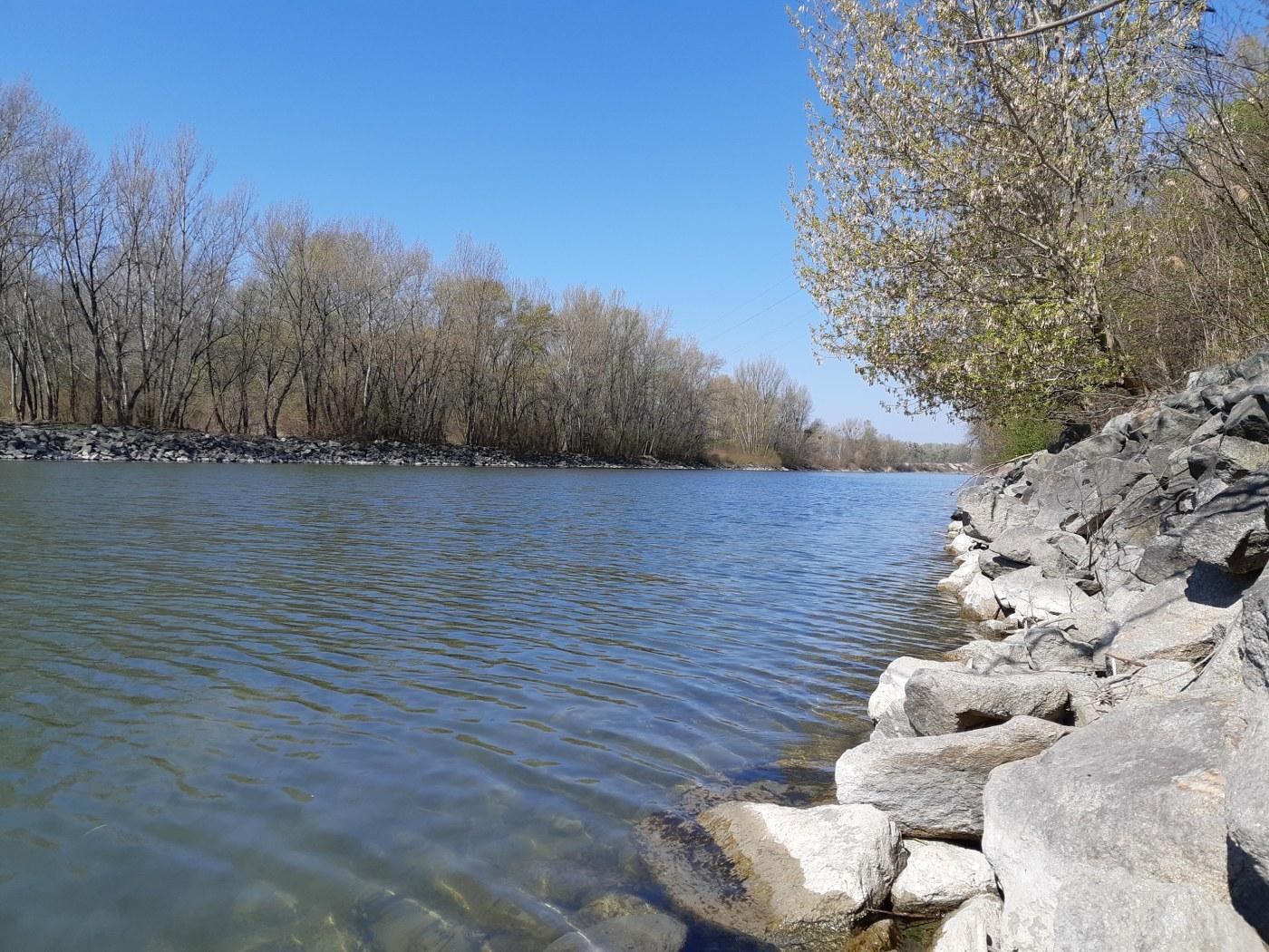 přírodní rezervace Starý háj
