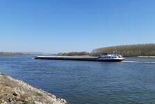 přírodní rezervace Starý háj (pohled na Dunaj)