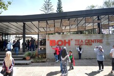 čajové centrum