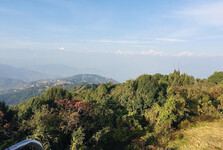 výhled z vyhlídkové věže