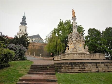 Immaculata, Nitra